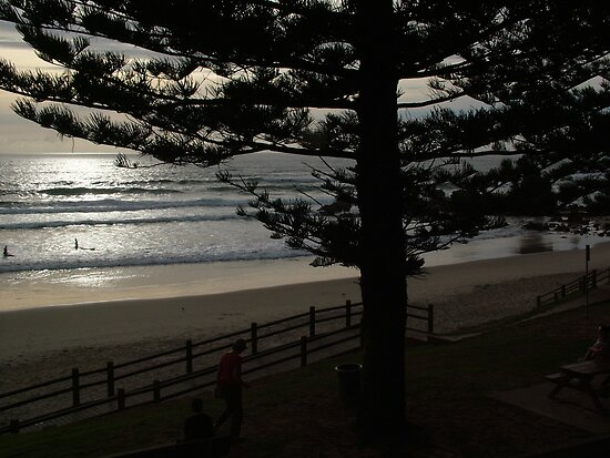 Early Risers - Port Macquarie by Gary Kelly
