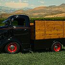 1942 Ford COE Grain Truck by TeeMack