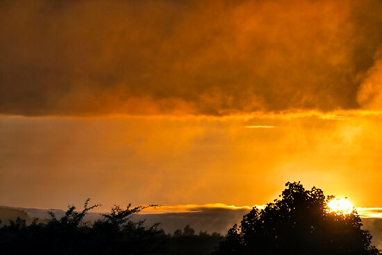 Misty Midlands Sunrise by Ann  Palframan