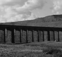 Ribblehead Viaduct by pauline hamilton