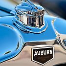 1929 Auburn 8-90 Speedster Hood Ornament 1 by Jill Reger