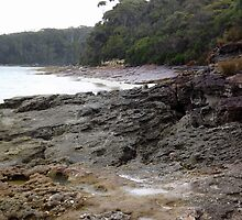 Rocky Shores - Nelson's Beach 2 by Paul Todd