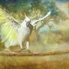Cockatoo Dreaming by Trudi's Images