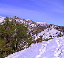Chile, Mountain Colorado by Daidalos