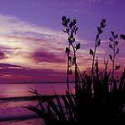 Dusky Sunset by Karen Lewis