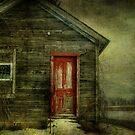 Abandoned (like Andrew Wyeth) by vigor