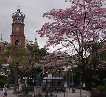 Springtide In Puerto Vallarta - Pimavera En Puerto Vallarta by Bernhard Matejka
