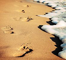 Footsteps on the beach by eliaskordelakos