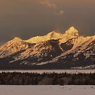 Winter Light - The Tetons by Stephen Vecchiotti