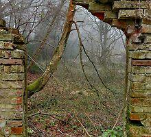 Broken Window. by relayer51