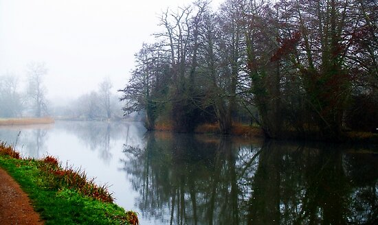 Misty Morning 3 by Mike Streeter