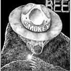 SHOEBOX GALLERY: Smokey The Bear by MH Heintz