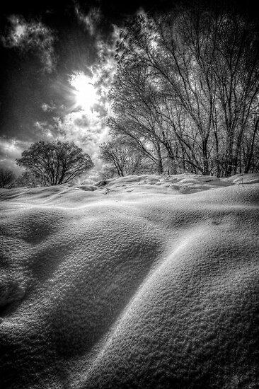 Shhh by Bob Larson