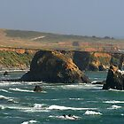 Californian Coast, San Simeon State Park by Ross Campbell
