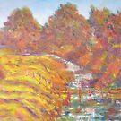 Creek crossing  by David Hinchliffe