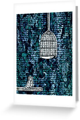 The Bird Cage by Kerri Swayze