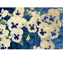 Monet's Dream Photographic Print