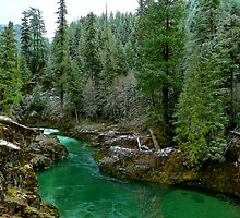 River Of Many Greens by Charles & Patricia   Harkins ~ Picture Oregon