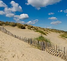 Dunes by JEZ22