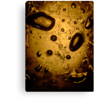 Oil & Water #3 Canvas Print