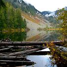Talapus Lake by YogiColleen
