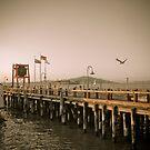 View of Alcatraz - The Rock by Barbara Gordon