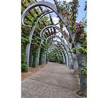 South Bank • Brisbane • Queensland Photographic Print