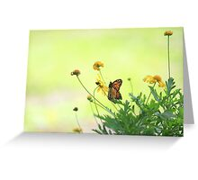 Monarch In the Spring Greeting Card