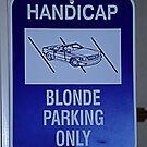 Handicap ???? by Thomas Eggert