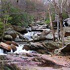 Goforth Creek by BluePhoenix