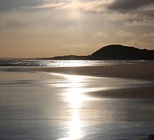 shining Sands 2 by beavo