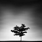 lonely dream by Keyur Mehta