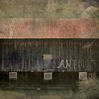 Antique Barn by vigor