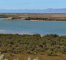Head of the Spencer Gulf, Port Augusta, Australia by PC1134