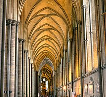 Salisbury Cathedral by JPassmore