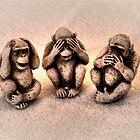 No Evil Monkeys Allowed (multi-HDR) by James Zickmantel