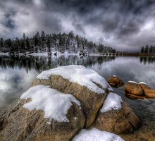 Cold Calm by Bob Larson