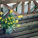 Flowers on bench by Henrik Hansen