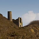 Cornish Engine House by Brian Roscorla