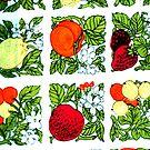 Fifties Fruit by BettyBanana
