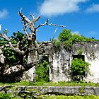 ruins at Rarotonga by Anne Scantlebury