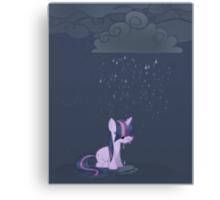 Rainy day pony Canvas Print