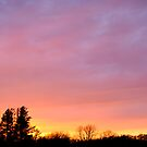A Minnesota Sunset by ciccone