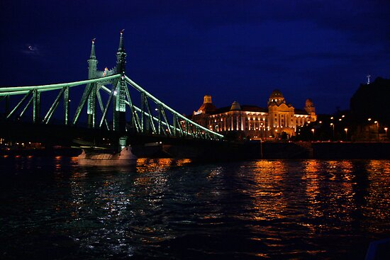 Liberty Bridge. The Danube River in Budapest at night. Number 2 by Anatoly Lerner