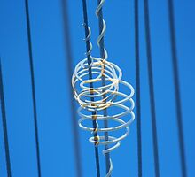 White Plastic Scrolls on Telephone Lines by alycanon