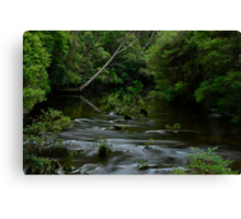 Kangaroo River. 7-3-12. Canvas Print
