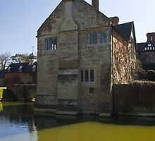 Moated house by Steve plowman