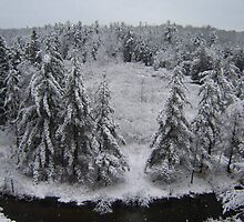Manistee River Snow Globe by Sonya Lynn Potts