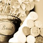 Wine Corks and Basil Plant by Amber Leigh Summers