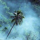 Lone Smoky Palm in Port Villa by julieapearce